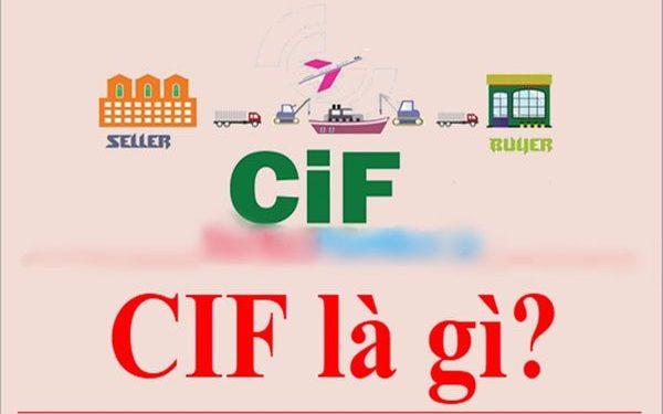 CIF là gì? Phân biệt giữa giá CIF và số CIF