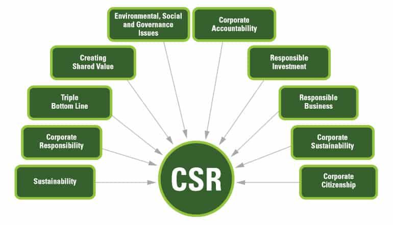 CSR là gì? CSR là viết tắt của từ gì? Công việc của nhân viên CSR trong doanh...